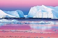 3 ngày trên đảo lớn nhất hành tinh băng