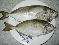 Cá Giò Bảy Món