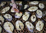 Đột nhập vào làng nướng cá tại Cửa Lò